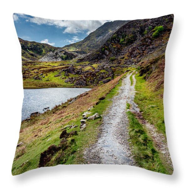 Moel Siabod Throw Pillow by Adrian Evans