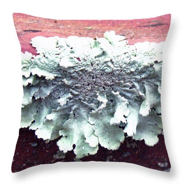 Mold Portrait Throw Pillow by Barbara McDevitt