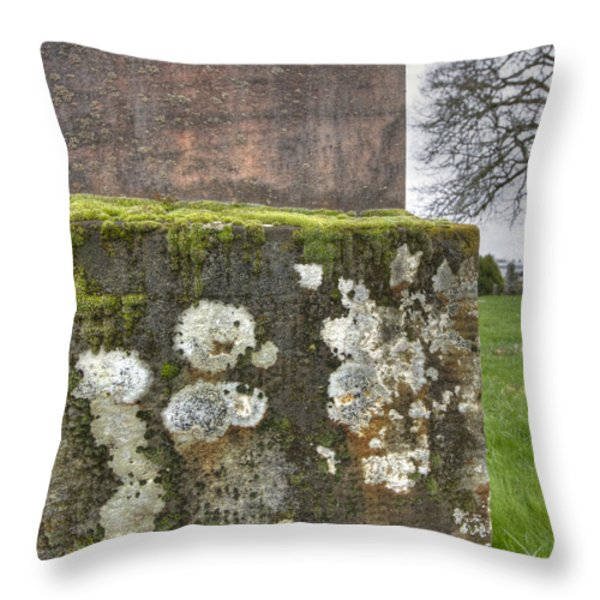 Moldy above and below Throw Pillow by Jean Noren