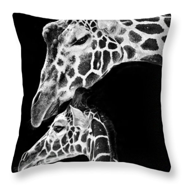 Mom And Baby Giraffe  Throw Pillow by Adam Romanowicz