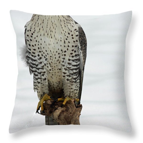 Moments of Stillness Gyrfalcon in the Snow Throw Pillow by Inspired Nature Photography By Shelley Myke