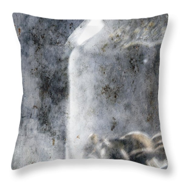 Money In A Jar Throw Pillow by Skip Nall