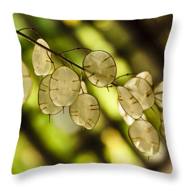 Money on Trees Throw Pillow by Christi Kraft