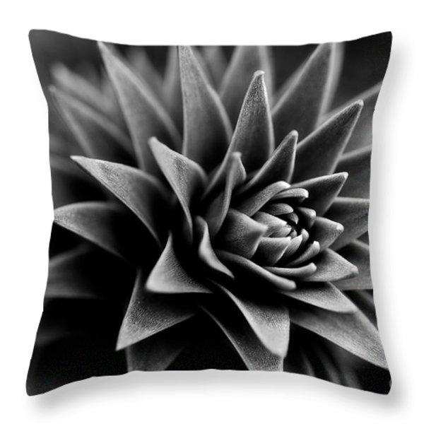 Monkey Puzzle Throw Pillow by Venetta Archer