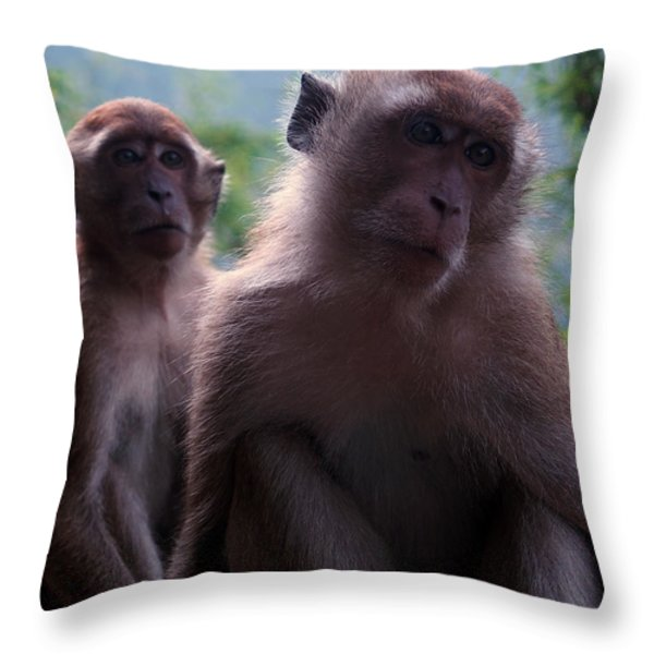 Monkey's Attention Throw Pillow by Justin Woodhouse