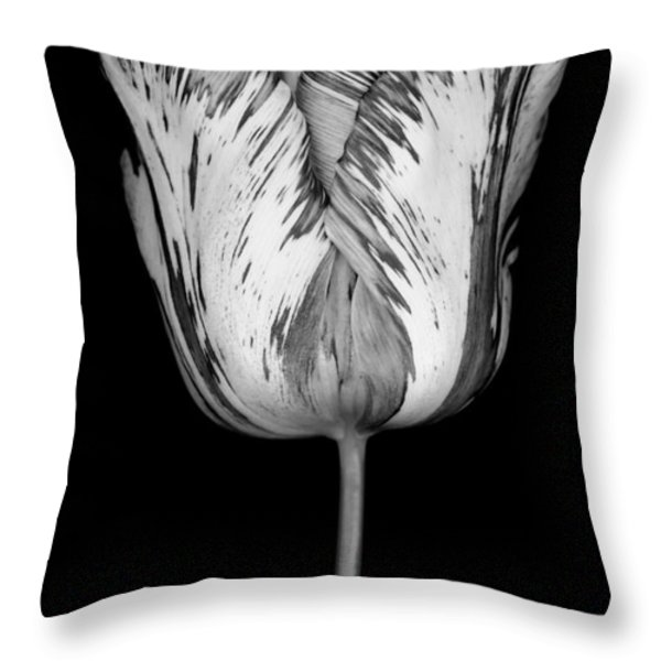 Monochrome Streaked Tulip Throw Pillow by Oscar Gutierrez