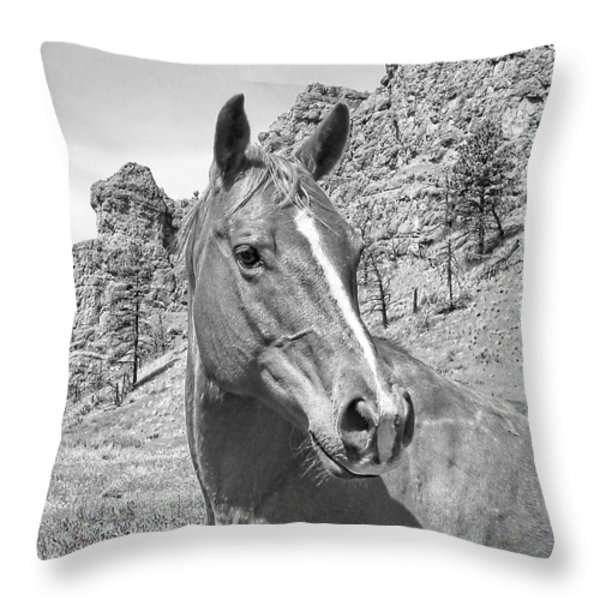 Montana Horse Portrait in Black and White Throw Pillow by Jennie Marie Schell
