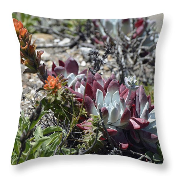 Monterey Indian Paintbrush and Ice Plant Throw Pillow by Bruce Gourley