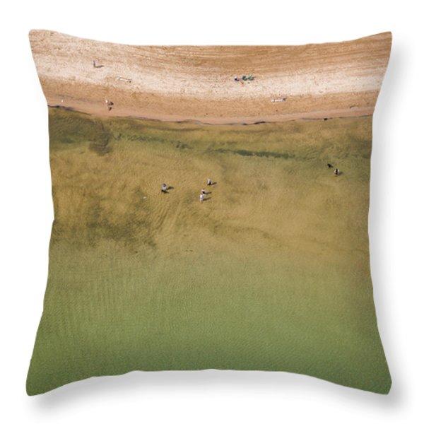 Montrose Beach Dog Park Throw Pillow by Adam Romanowicz