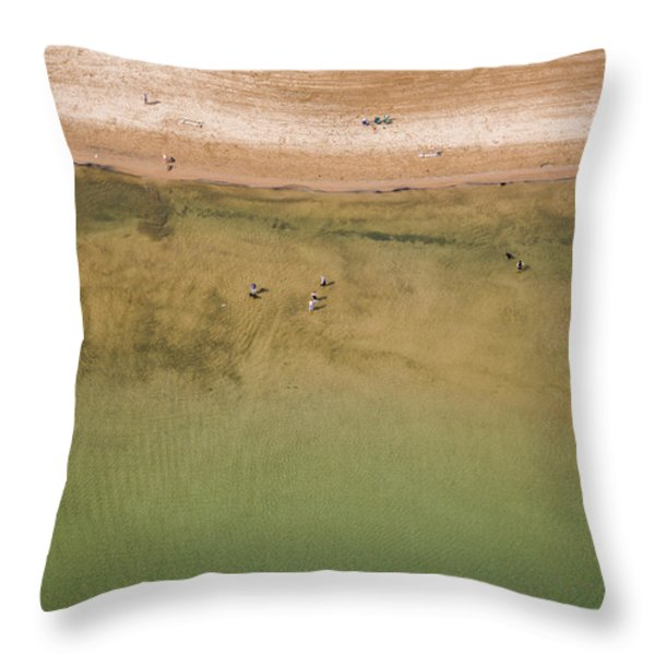 Montrose Beach Dog Park Throw Pillow by Adam Romanowicz