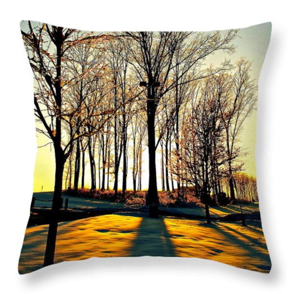 Mood Lighting Throw Pillow by Frozen in Time Fine Art Photography