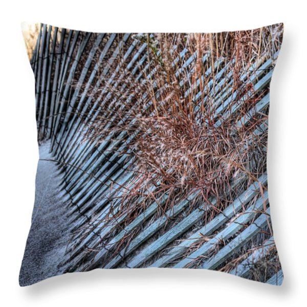 Moods Throw Pillow by JC Findley