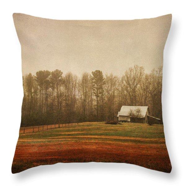 Moody Morning Stillness Throw Pillow by Paulette B Wright