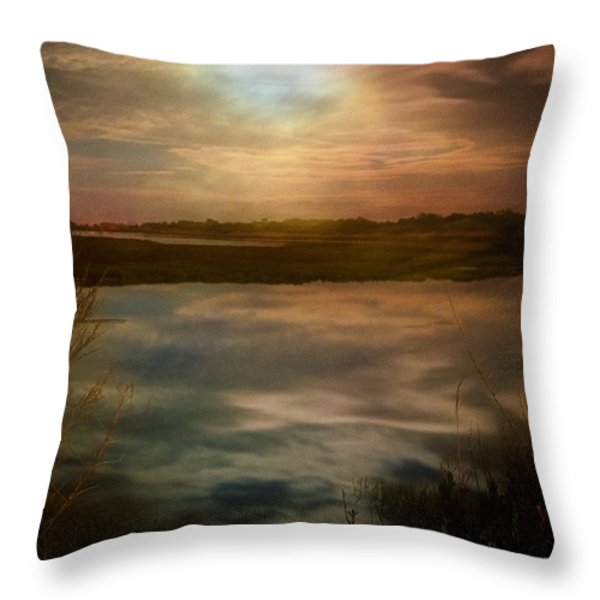 Moon Over Marsh - 35mm Film Throw Pillow by Gary Heller