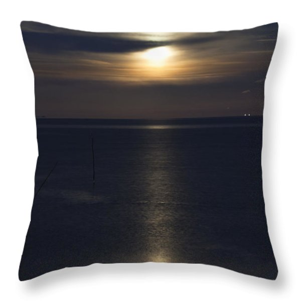 Moon Rise Throw Pillow by Anne Gilbert