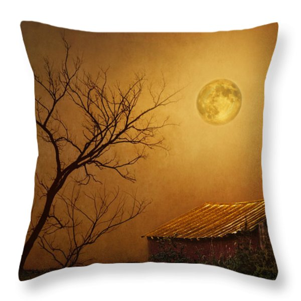 Moonglow Over Polenz Ranch Throw Pillow by Nikolyn McDonald
