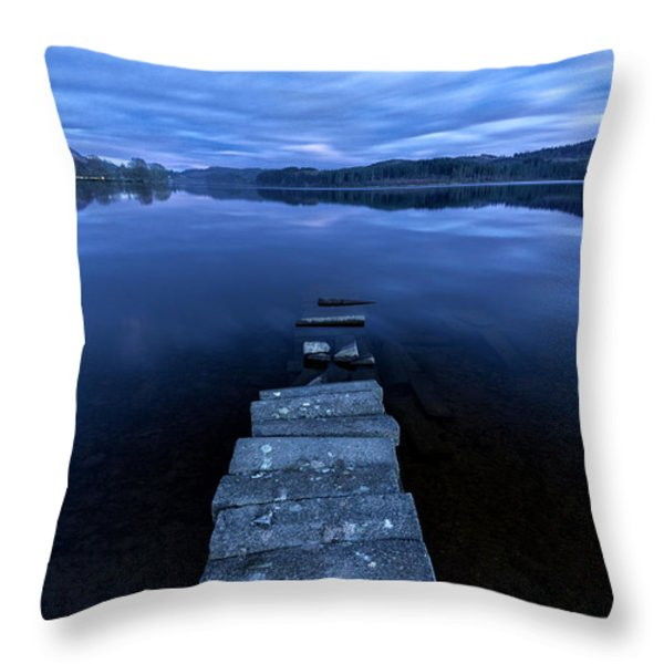 Moonlight Shadow Throw Pillow by John Farnan