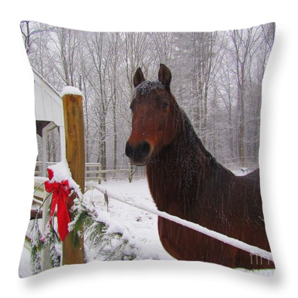Morgan Horse Christmas Throw Pillow by Elizabeth Dow