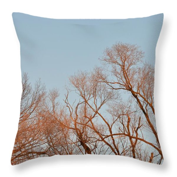 Morning Coloured In Fall Throw Pillow by Sonali Gangane