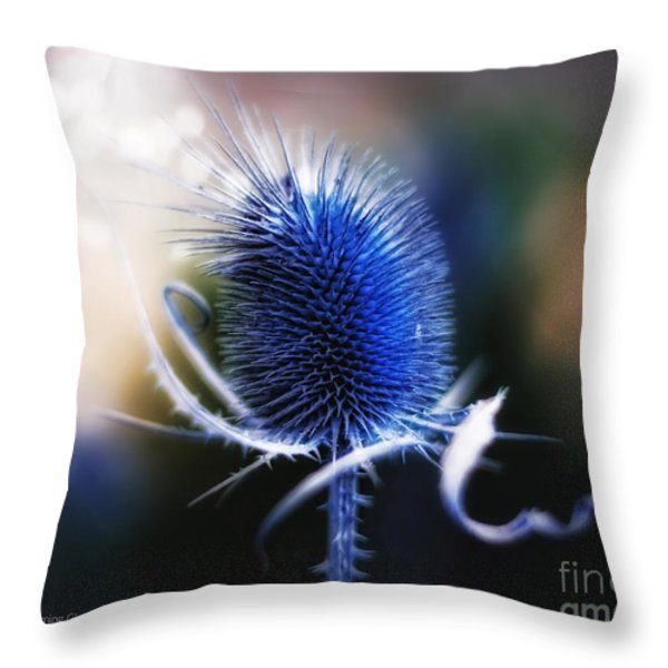 Morning Glory Throw Pillow by Mo T