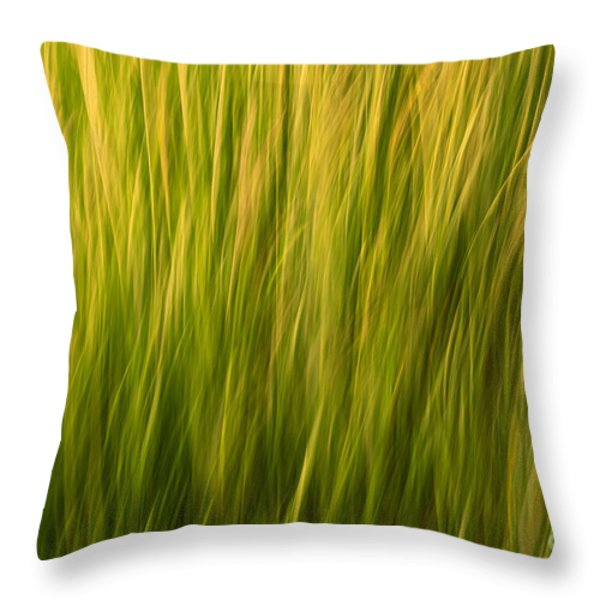 Morning Glory Throw Pillow by Sandi Mikuse