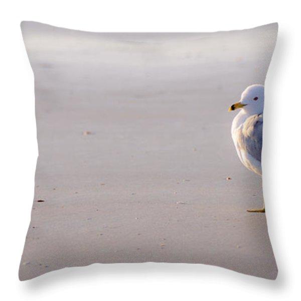 Morning Gull Throw Pillow by Kelly McNamara