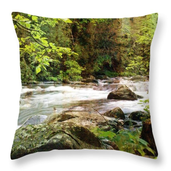 Morning In The Mountains Throw Pillow by Marty Koch