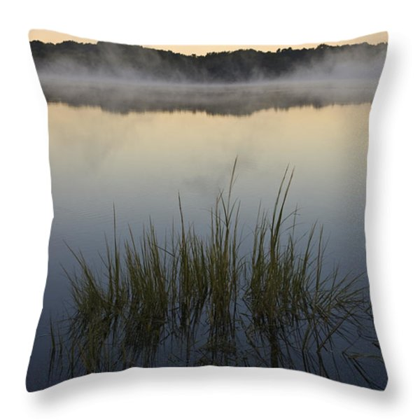 Morning Mist at Sunrise Throw Pillow by David Gordon