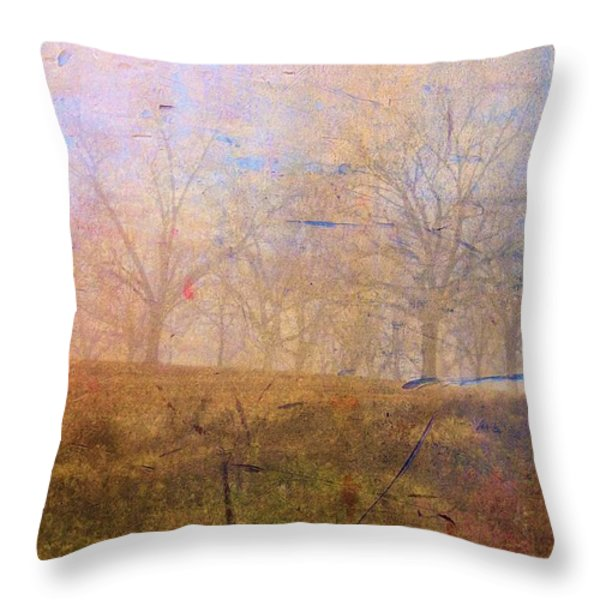 Morning Mist Throw Pillow by Jan Amiss Photography