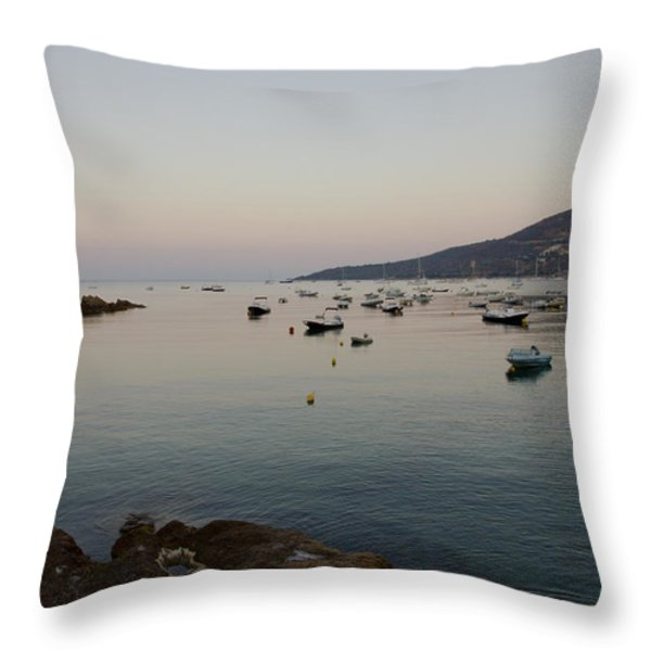 Morning Moon Throw Pillow by Sophie De Roumanie