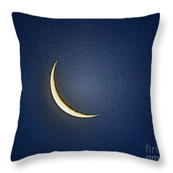 Morning Moon Textured Throw Pillow by Al Powell Photography USA