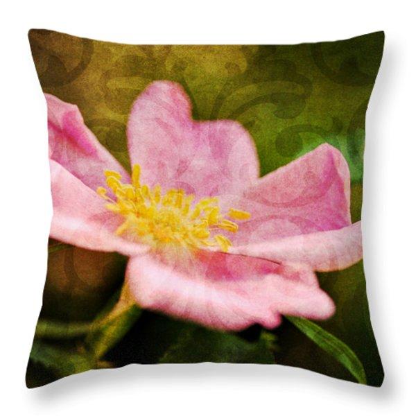 Morning Rose Throw Pillow by Kelly Nowak