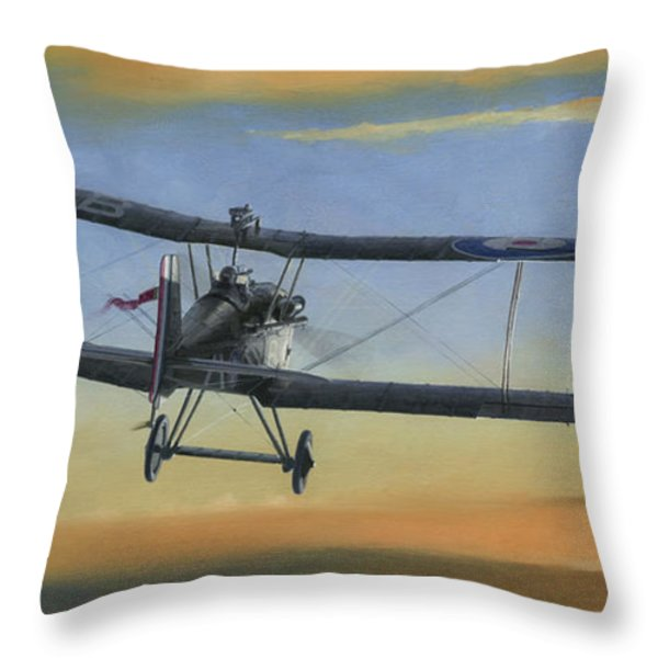 Morning Serenade Throw Pillow by Wade Meyers