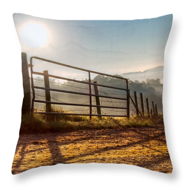 Morning Shadows Throw Pillow by Debra and Dave Vanderlaan