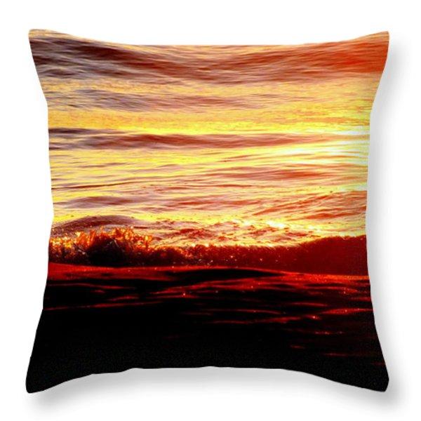 Morning Splash Throw Pillow by Karen Wiles