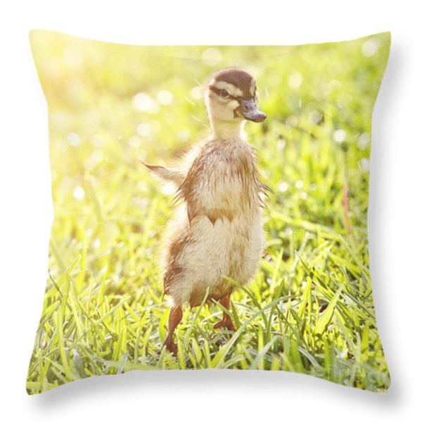 Morning Stretch Throw Pillow by Scott Pellegrin