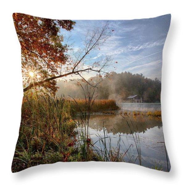 Morning Sun Throw Pillow by Daniel Behm