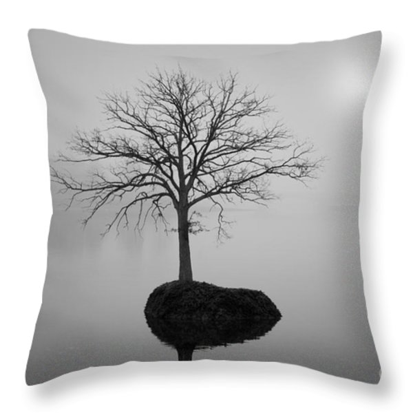 Morning Tranquility Throw Pillow by Dave Gordon