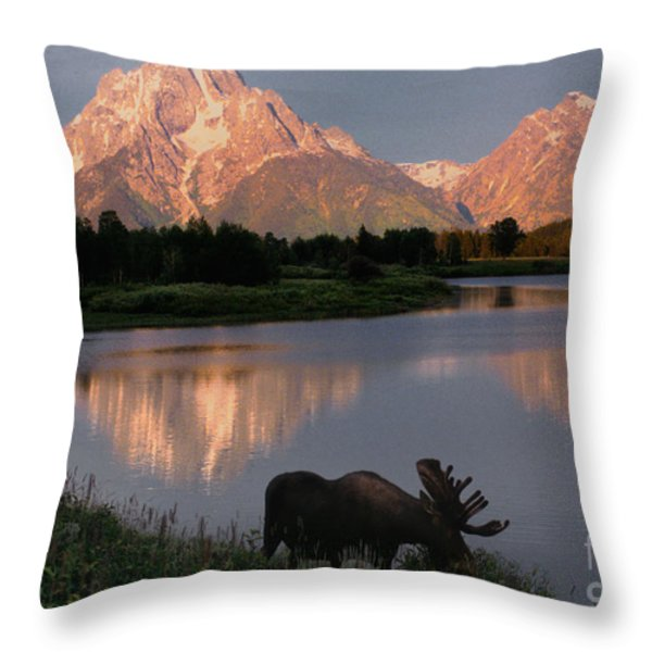 Morning Tranquility Throw Pillow by Sandra Bronstein