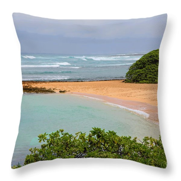 Morning Walk Throw Pillow by Jon Burch Photography