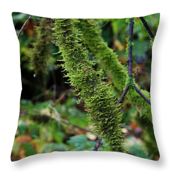 Moss Beauty Throw Pillow by Jeanette C Landstrom