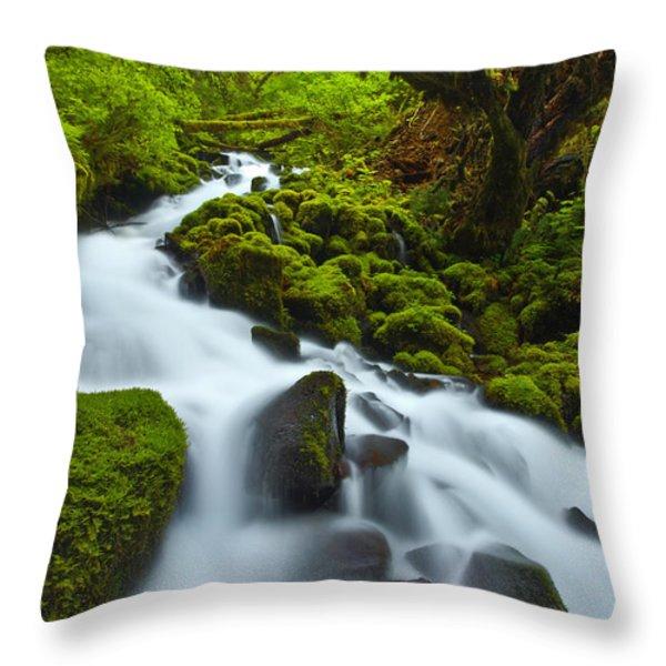 Mossy Creek Cascade Throw Pillow by Darren  White