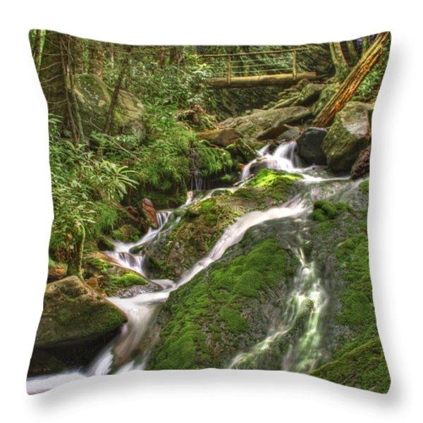 Mossy Creek Throw Pillow by Debra and Dave Vanderlaan