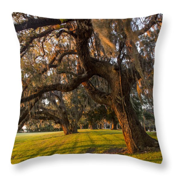 Mossy Trees at Sunset Throw Pillow by Debra and Dave Vanderlaan