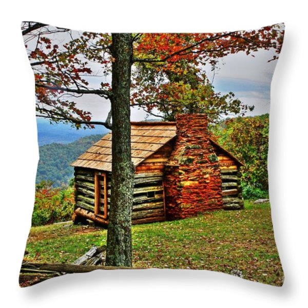 Mountain Cabin 1 Throw Pillow by Dan Stone