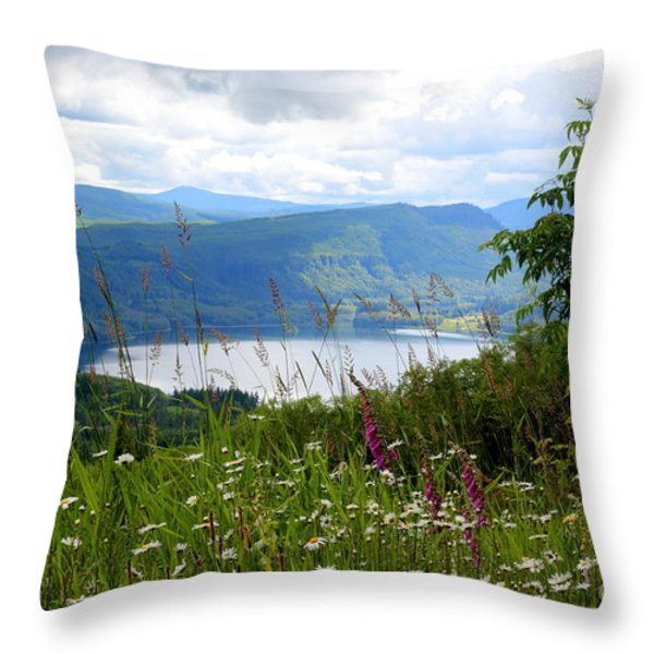 Mountain Lake Viewpoint Throw Pillow by Carol Groenen
