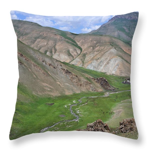 Mountain Landscape In The Tash Rabat Valley Of Kyrgyzstan Throw Pillow by Robert Preston