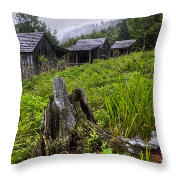 Mountain Mists at Le Conte Throw Pillow by Debra and Dave Vanderlaan