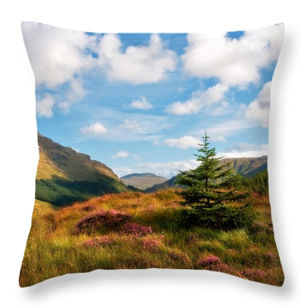 Mountain Pastoral. Rest And Be Thankful. Scotland Throw Pillow by Jenny Rainbow