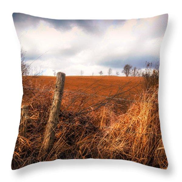 Mountain Pasture Throw Pillow by Bob Orsillo